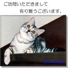Photo_20200315212901