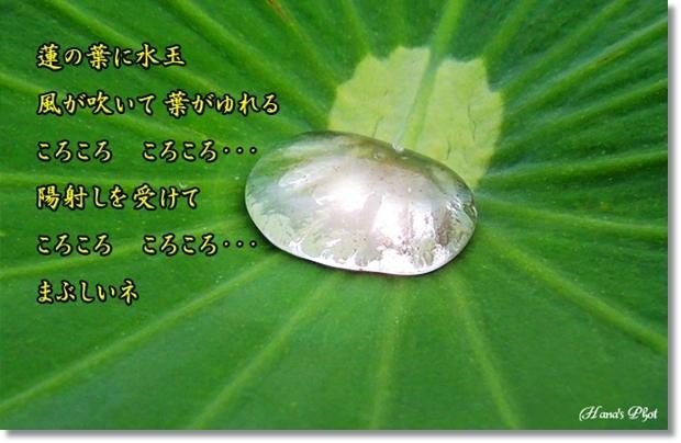 Photo_20200811221002